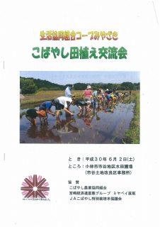 コープみやざき 平成30年度「こばやし田植え交流会」に参加しました。